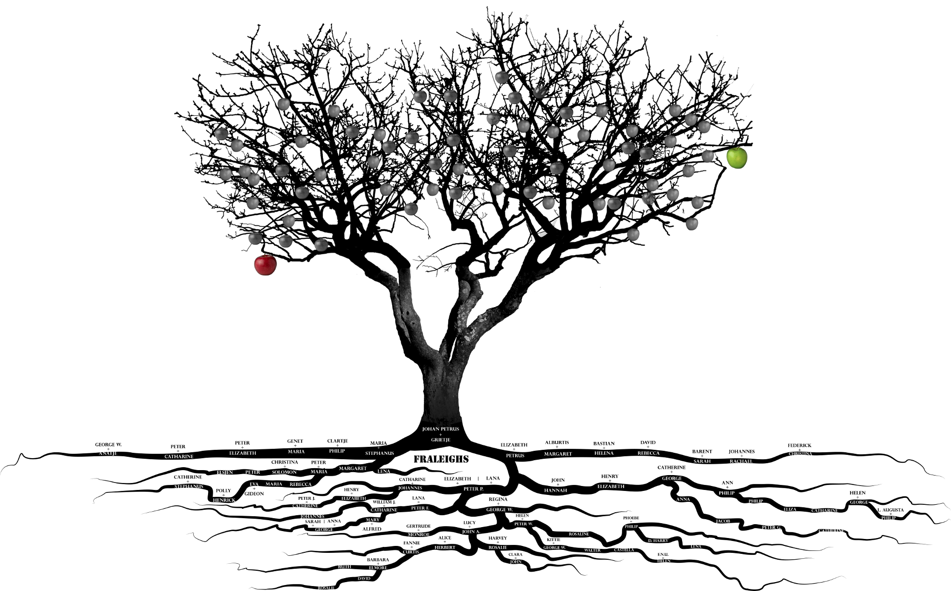 background image of an apple tree